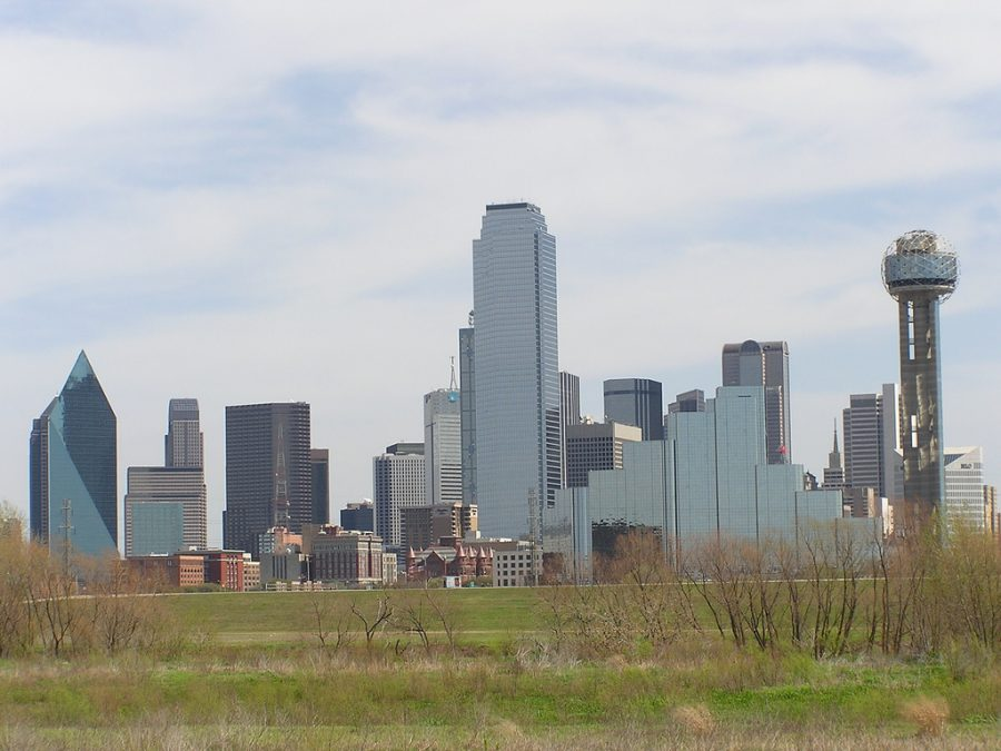 View of the Dallas skyline (David Herrera / Flickr)