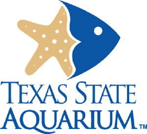 Texas State Aquarium back to near capacity after fish kill
