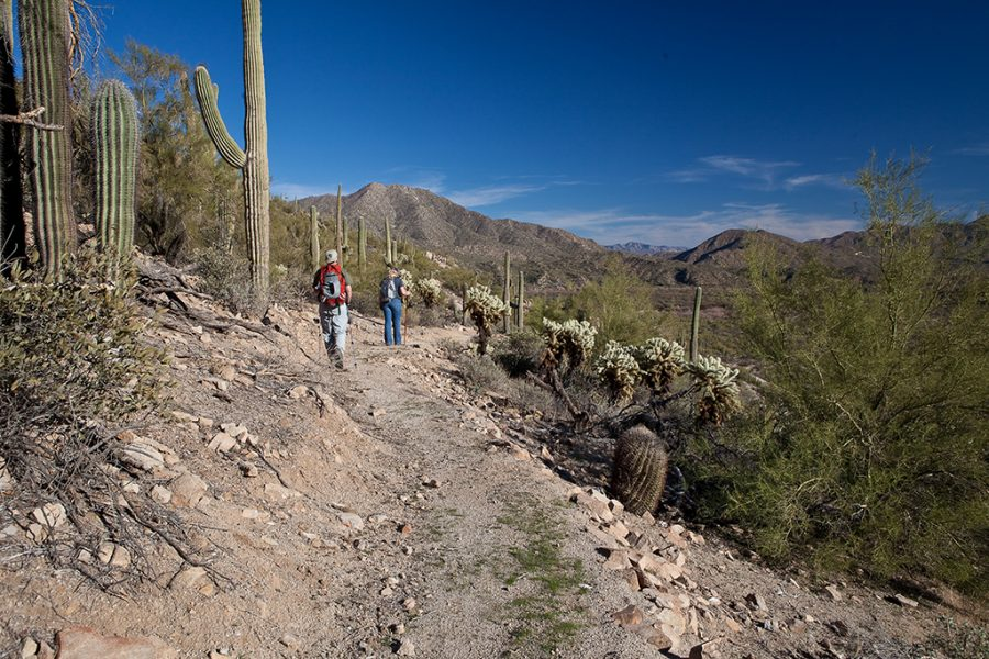 Rescuers found 58-year-old hiker who was lost on the Arizona Trail for three days without food. The trail is an 820 mile path that stretches from Mexico to Utah. (Photo by Bob Wick, BLM-California Via Flickr)
