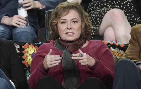 Roseanne Barr blames Ambien drugs for racist tweet