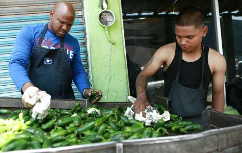 Two men stand over a crate of green peppers.