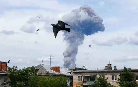 Smoke rises behind a bird flying in the foreground.