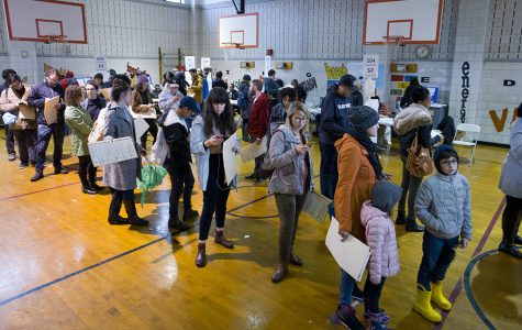 People stand in line to vote.