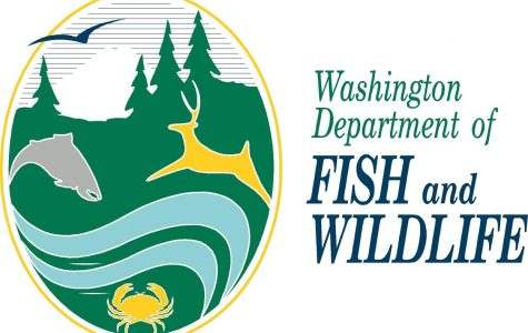 The Washington Department of Fish and Wildlife Logo