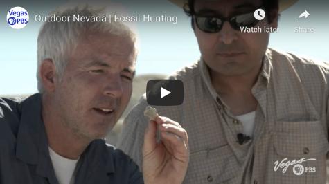 Nevada fossils