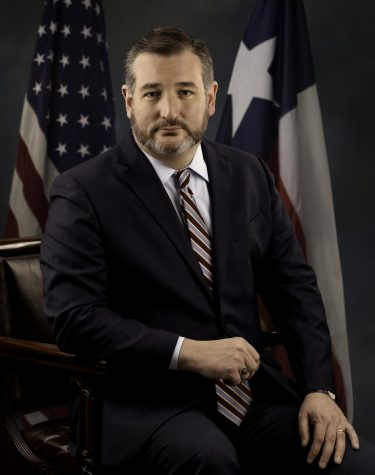 Sen. Ted Cruz portrait